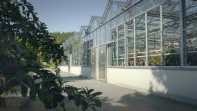 Grande serra con le pareti di vetro, fondamenti, tetto di timpano, letto del giardino video d archivio