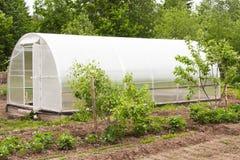 Grande serre chaude pour l'élevage des légumes Photos stock