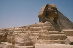 Grande Sphinx de Giza Fotos de Stock Royalty Free