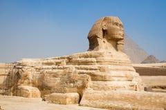 Grande Sphinx di Giza Immagine Stock