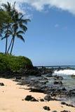 Grande spiaggia Fotografia Stock