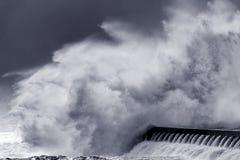 Grande spruzzata dell'onda Fotografia Stock Libera da Diritti