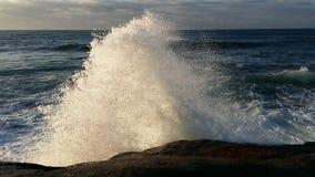 Grande spruzzata di Wave Fotografia Stock Libera da Diritti