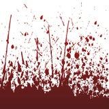 Grande spruzzata rossa Fotografie Stock Libere da Diritti