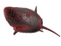 Grande squalo bianco di Digital Fotografia Stock Libera da Diritti