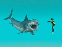 Grande squalo bianco ed operatore subacqueo Immagini Stock Libere da Diritti