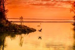 Grande st Marys del lago Immagine Stock