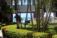 Grande station balnéaire de Marriott de caïman Image libre de droits