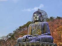 Grande statua del Buddha Fotografia Stock