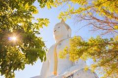 Grande statua del Buddha Fotografia Stock Libera da Diritti