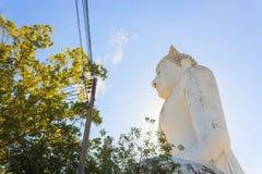 Grande statua del Buddha Fotografie Stock