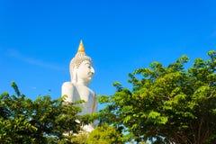 Grande statua del Buddha Fotografie Stock Libere da Diritti