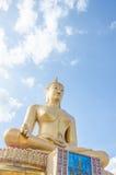Grande statua del Buddha Immagine Stock