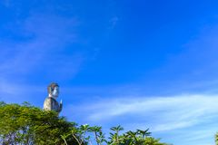 Grande statua di Buddha sopra un treeline fotografia stock