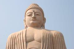 Grande statua di pietra gigante di Buddha al fico delle indie orientali Gaya India immagine stock libera da diritti