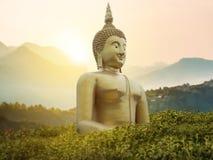 Grande grande statua potente di Buddha nel colore dell'oro nel parco Fotografia Stock Libera da Diritti