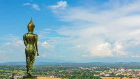 Grande statue de Bouddha banque de vidéos