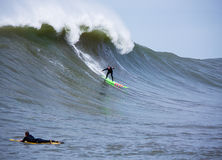 Grande surfista Garrett McNamara Surfing Mavericks California di Wave Fotografia Stock