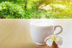Grande tasse de café dans la lumière heureuse de matin d'humeur Image libre de droits