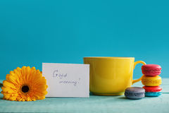 Grande tasse de thé avec la fleur et les macarons de wite avec le blanc sur le fond bleu Images libres de droits