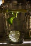 Grande tazza di acqua dolce con il limone Fotografie Stock Libere da Diritti