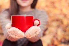 Grande tazza rossa con un tè caldo in mani di una donna Immagini Stock Libere da Diritti