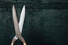 Grande tesoura de podar manual nova profissional Secateurs brilhantes em um fundo verde fotos de stock