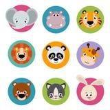 Grande testa dell'insieme delle icone degli animali Fronte divertente della raccolta di vettore degli animali illustrazione di stock