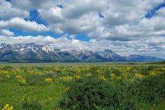 Grande Tetons fotografia stock libera da diritti