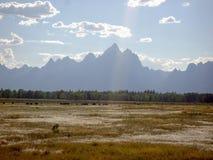 Grande Tetons nel pomeriggio fotografia stock libera da diritti