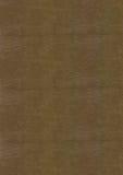 Grande texture en cuir de QG Image stock
