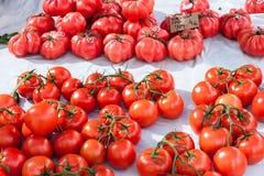 Grande tomatiga rosa rosa dei pomodori e pomodori della vite da vendere nella stalla del mercato di Sineu, Maiorca Immagine Stock