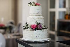 Grande torta di cerimonia nuziale Fotografia Stock