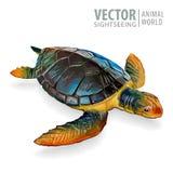 grande tortue de mer Illustration de vecteur Tortue d'isolement sur le fond blanc Images libres de droits