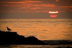 Grande tramonto Immagini Stock
