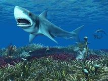 Grande tubarão branco ilustração do vetor