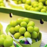 Grande uva verde giapponese, Tokyo, Giappone Primo piano fotografia stock