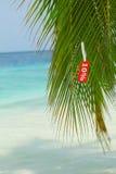 Grande vacanza con il prezzo basso Fotografia Stock
