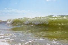 Grande vague verte photos libres de droits