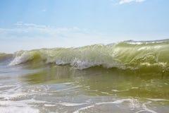 Grande vague verte image stock