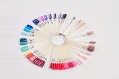 Grande varietà di campioni di colore del chiodo Fotografia Stock