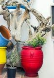 Grande vaso da fiori rosso Immagine Stock