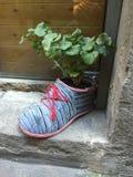 Grande vaso della pianta della scarpa fotografia stock