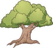 Grande vecchio albero Illustrazione di Stock