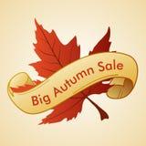 Grande vendita di autunno Fotografie Stock