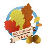 Grande vendita di autunno Immagine Stock