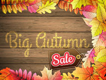 Grande vente d'automne ENV 10 Photographie stock
