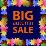 Grande vente saisonnière d'automne Photos libres de droits