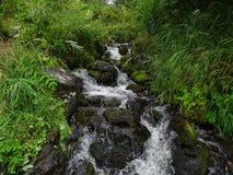 Grande viagem a Kamchatka Lugares misteriosos Foto de Stock Royalty Free
