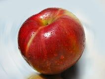 Grande violenza Apple rosso con rugiada fotografie stock libere da diritti